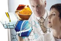 Nano Curcumin trong củ nghệ đã trở thành tâm điểm nghiên cứu trên toàn thế giới