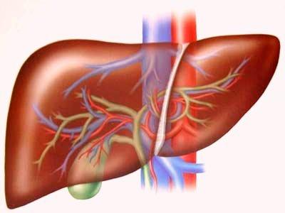 Nano Curcumin giúp phòng ngừa, hỗ trợ điều trị viêm gan, xơ gan mãn tính