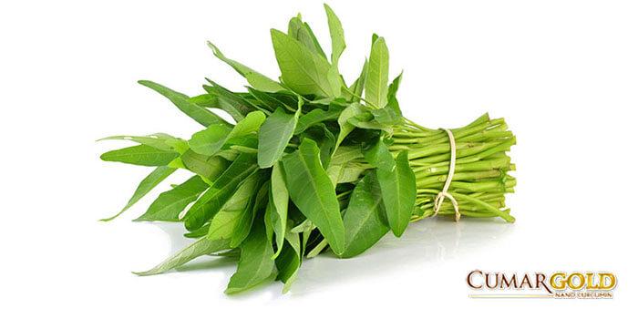 Tại sao đau dạ dày nên ăn rau muống