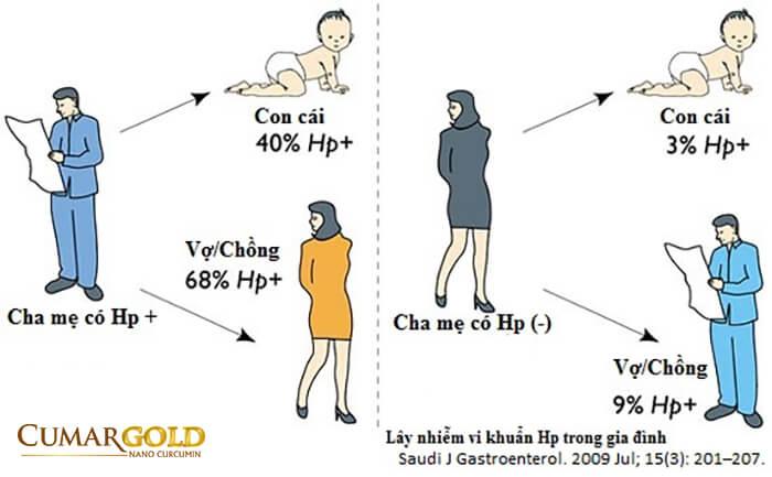Trong gia đình có người bị nhiễm vi khuẩn HP thì rất dễ bị lấy nhiễm vi khuẩn HP