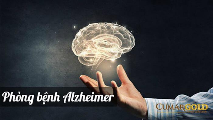 Giúp phòng bệnh Alzheimer