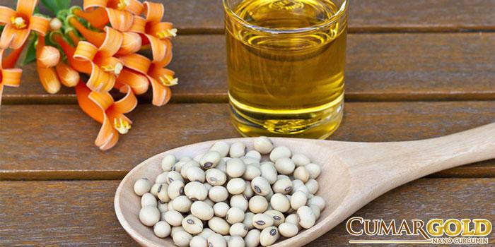 Hạn chế thức ăn dầu mỡ, sử dụng dầu thực vật thay cho mỡ động vật
