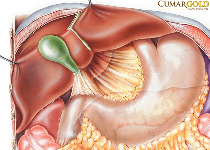 Viêm hang vị trào ngược dịch mật là chứng bệnh nguy hiểm.