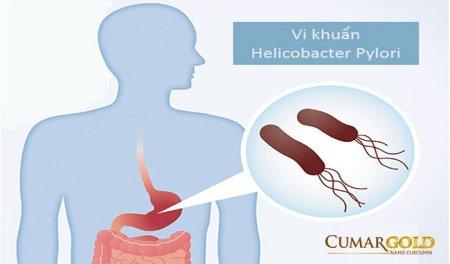 Vi khuẩn hp đường ruột và những điều cần biết