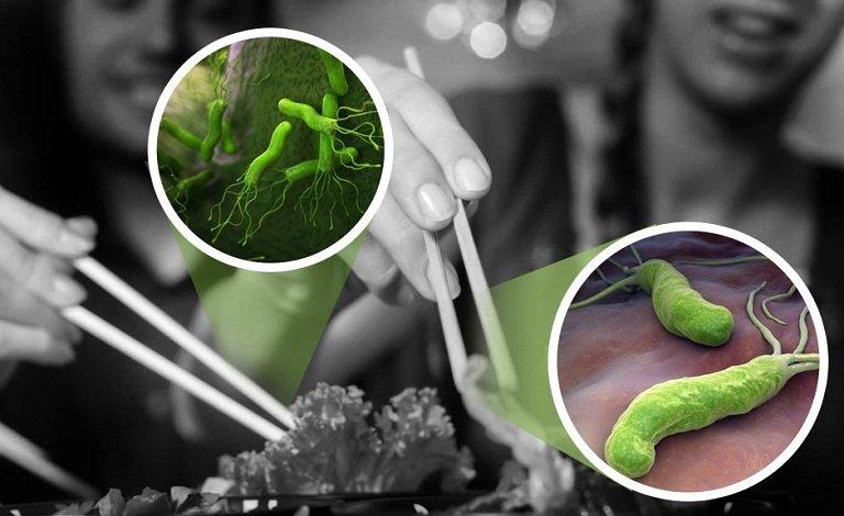 Đặc điểm sinh học của Helicobacter Pylori