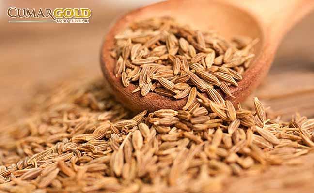 Hạt thì là thường được dùng để trị một số bệnh liên quan đến đường tiêu hóa trong đó có viêm hang vị dạ dày
